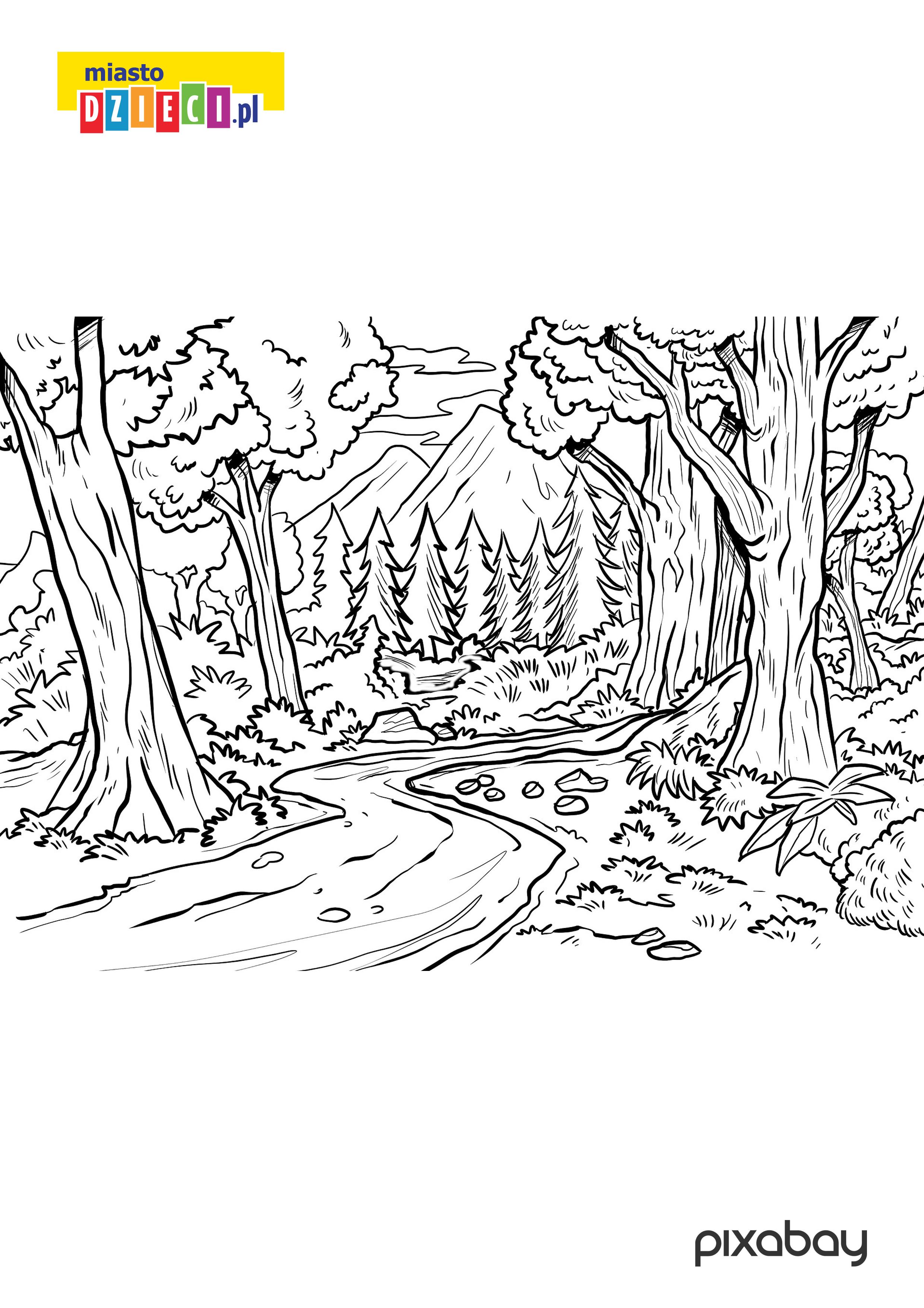 kolorowanka las do druku malowanki dla dzieci do pobrania