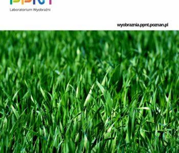 Pytamy żuka, co piszczy w trawie. Warsztaty pod chmurką