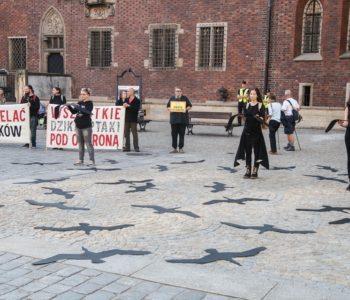 Zatrzymajmy rzeź ptaków! #NiechLecą! Protest przeciwko polowaniom na ptaki