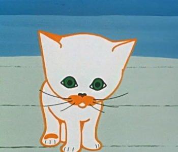 Dziwny świat kota Filemona.  Nazywam się Filemon. Obejrzyj bajkę