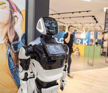 Roboty dotarły do Szczecina i Poznania!