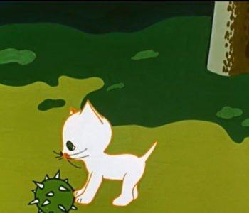 Dziwny świat kota Filemona.  Zabawa w chowanego. Obejrzyj bajkę