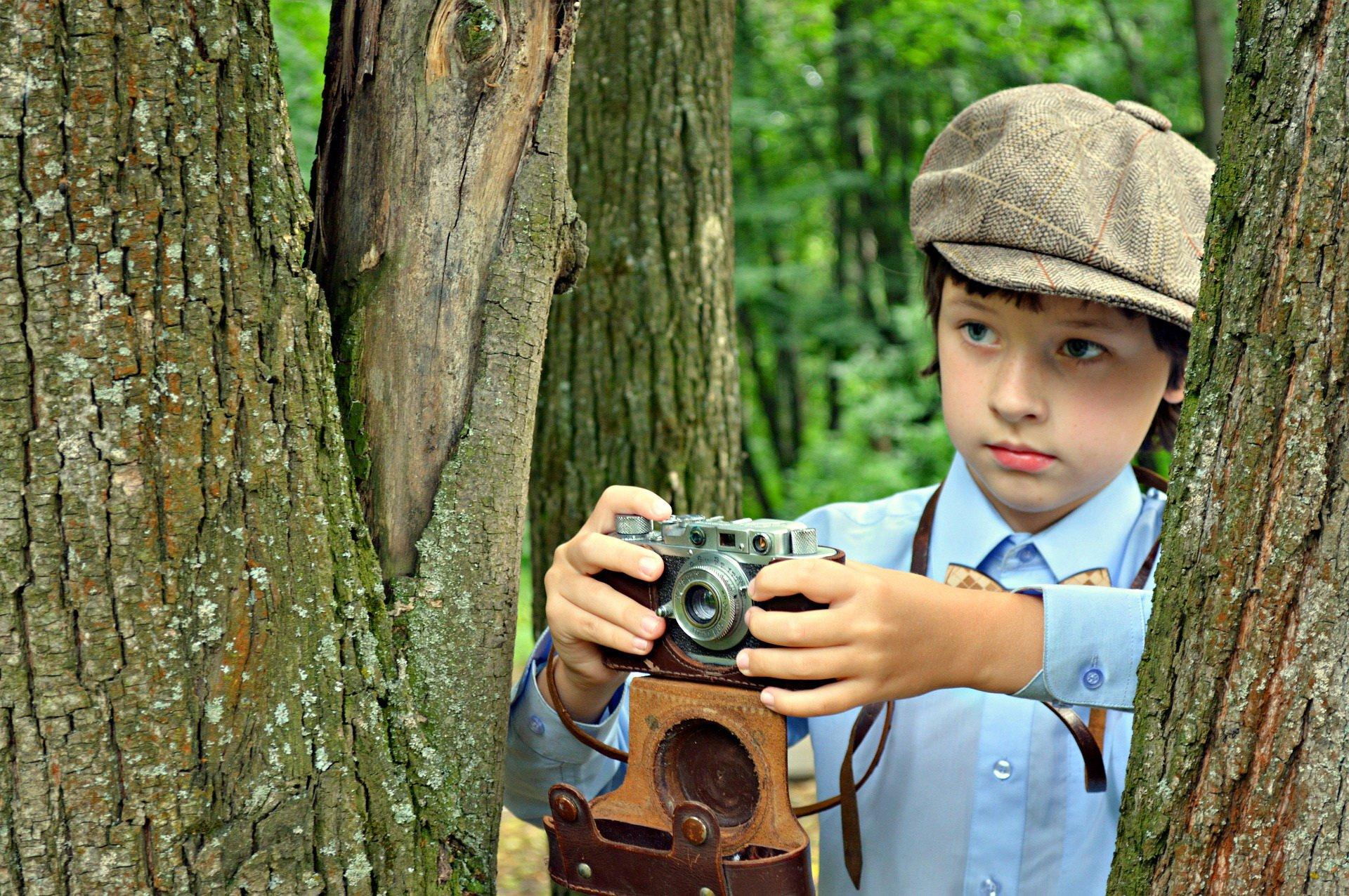 Piosenka o lasach piosenki dla dzieci teksty i melodie