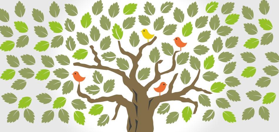 Dyplom Młodego Ekologa do druku, dyplomy do pobrania pdf za darmo