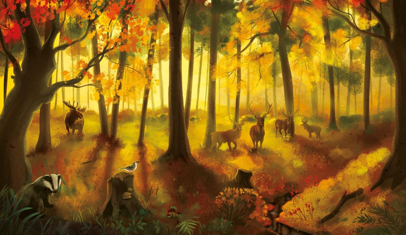 Puszcza - wyjątkowa książka Marcina z Lasu