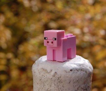 Minecraft – quiz
