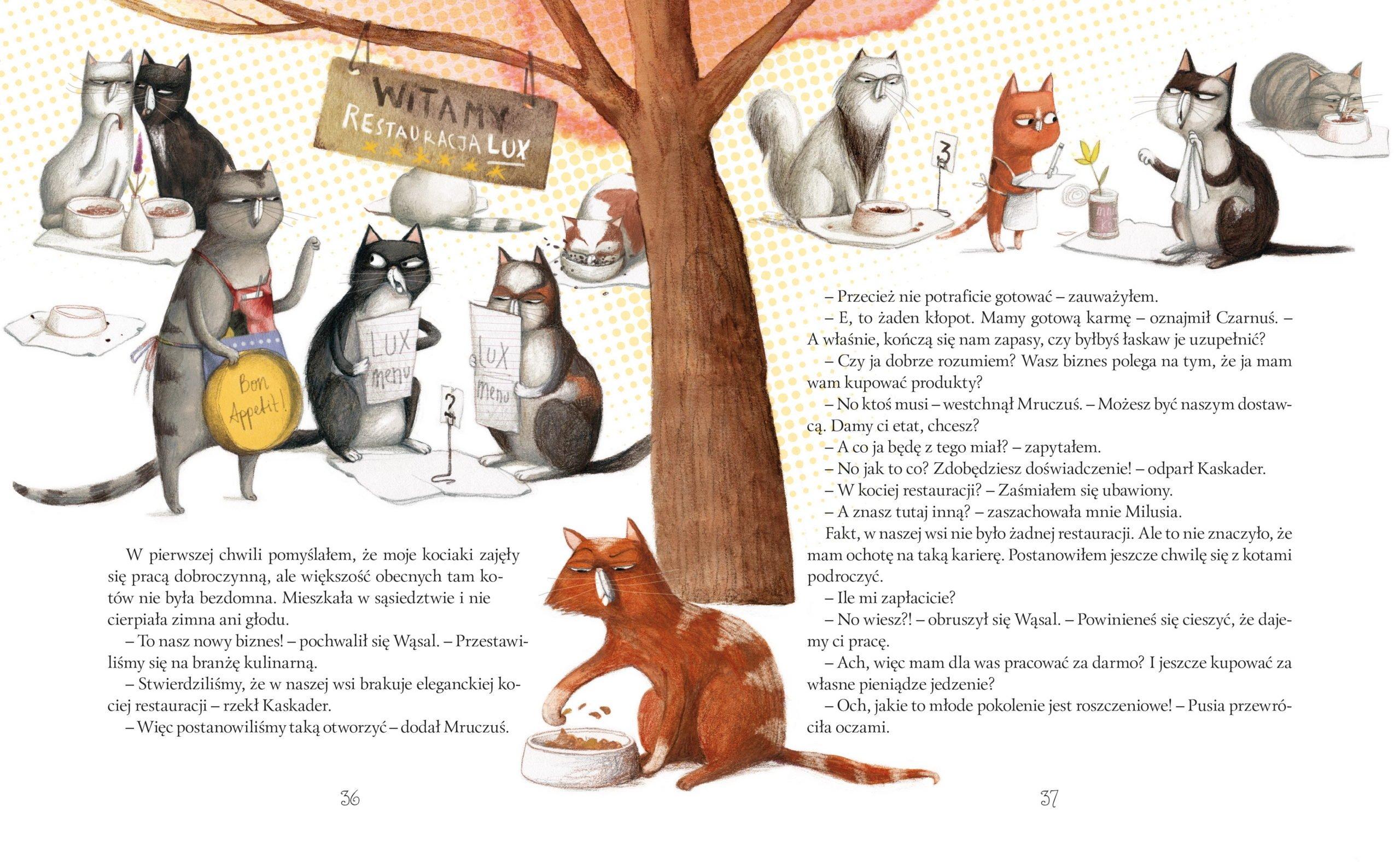Nowe przypadki kociej gromadki książka dla dzieci