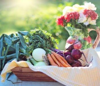 Quiz o warzywach, darmowe quizy obrazkowe dla dzieci z odpowiedziami