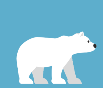 Polarny zeszyt przedszkolaka - materiały edukacyjne dla najmłodszych!