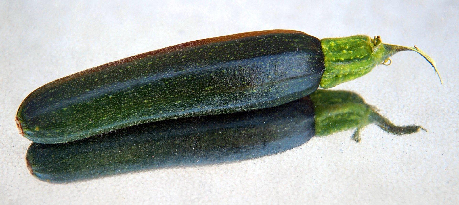 quiz o warzywach dla dzieci