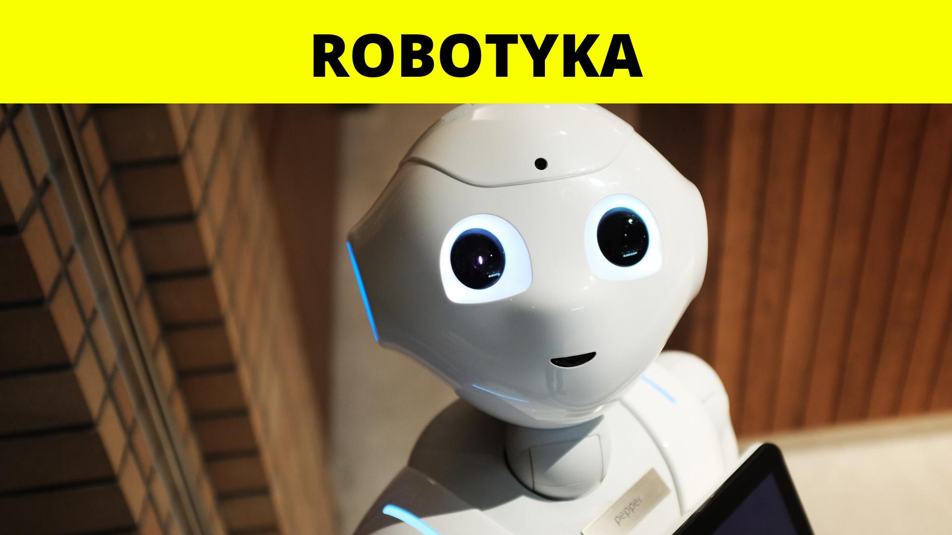 Robotyka - budowanie i programowanie. Warsztaty dla dzieci