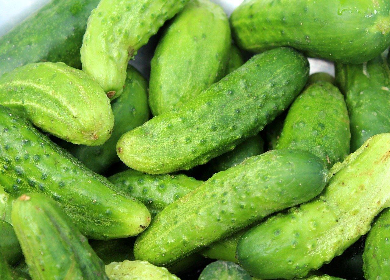 Jakie to warzywo? Quiz dla najmłodszych: Warzywa