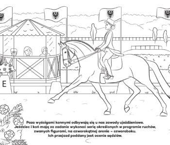 Koń i jeździec, kolorowanka dla dzieci online. Darmowe kolorowanki do druku z końmi