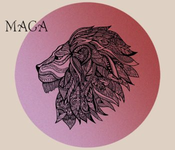 Krav Maga – darmowe warsztaty ruchowe online