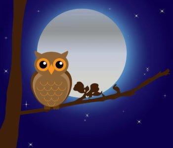 Bajka na dobranoc do czytania dzieciom o szkole dla zwierząt
