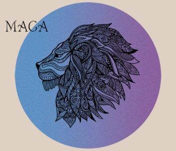 Krav Maga – warsztaty ruchowe dla dzieci