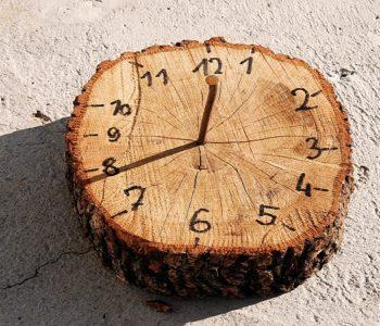 zegar z pnia drzewa