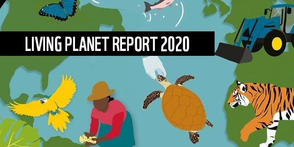 życie planety- raport 2020