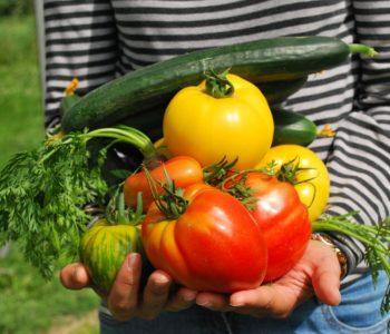 Vegetables – warzywa – quiz z angielskiego