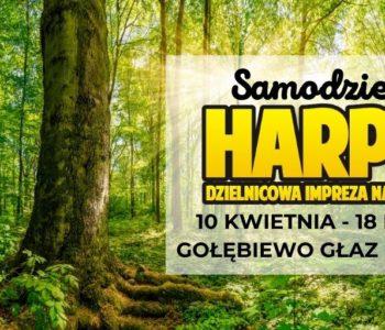 Samodzielny Harpuś – Dzielnicowa impreza na orientację: Gołębiewo Głaz Bąbelków