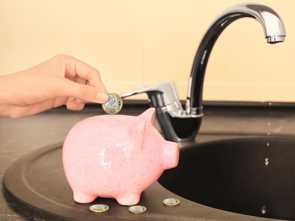 Domowa ekonologia, czyli proste rady, jak dbać o środowisko, a przy tym oszczędzać pieniądze