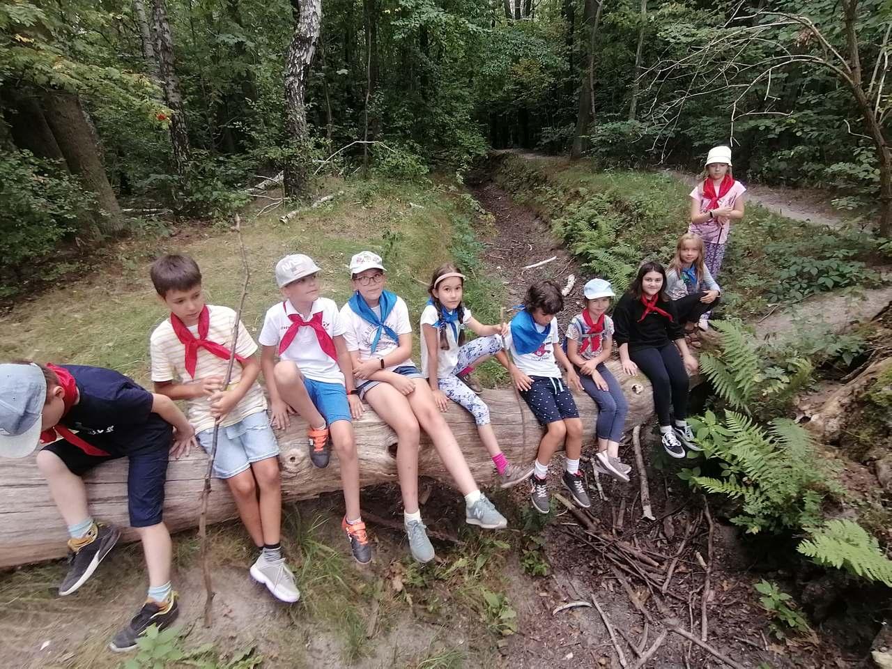 Wakacje z Dziećmi Puszczy – półkolonie i Camp. Zapisy!