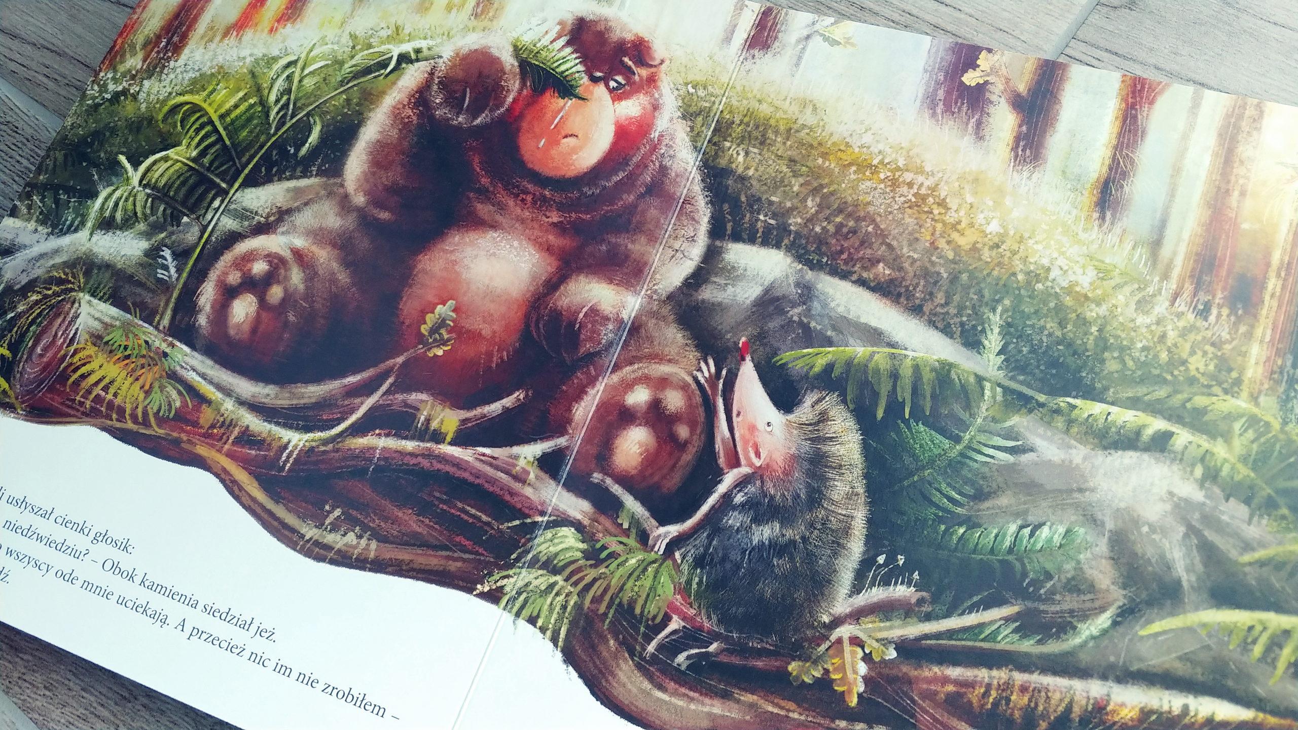 Niedźwiadek szuka przyjaciół opinie o książce