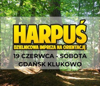 Harpuś z mapą do Klukowa!
