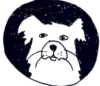 Pies Alfred i historia jego skarpet