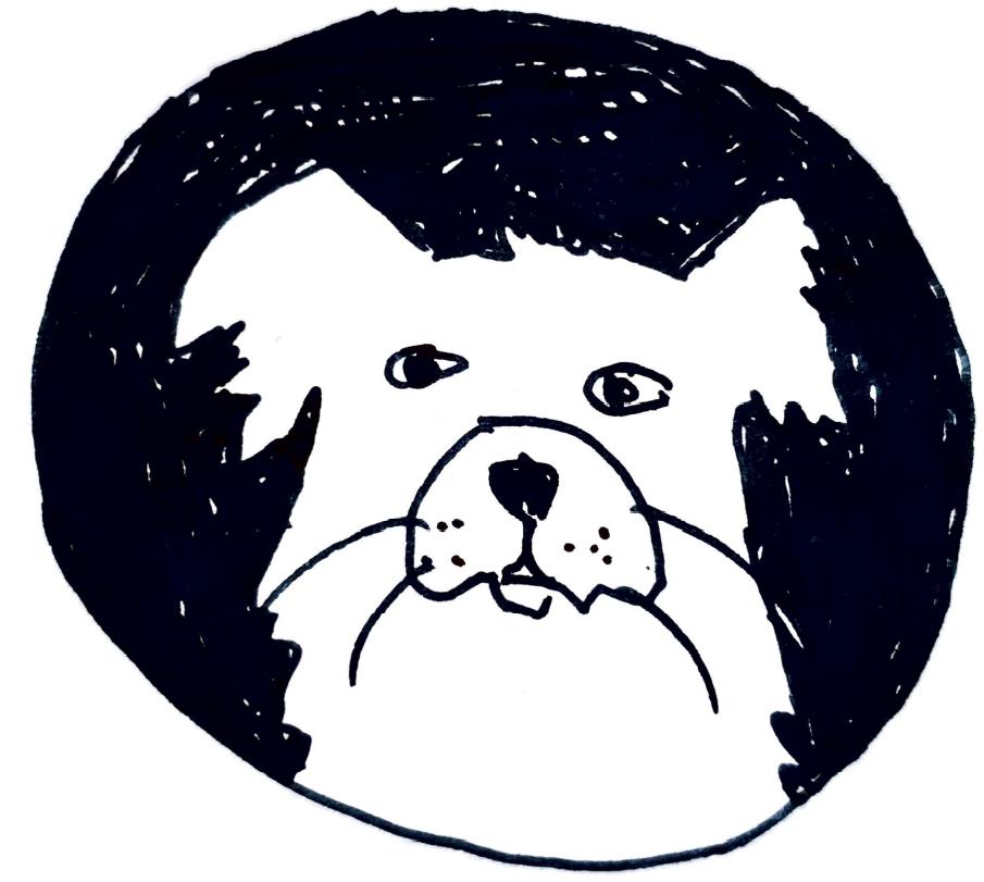 Bajka do czytania lub słuchania przed snem o psie Alfredzie