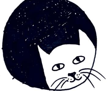 bajka o kotku bajki na dobranoc