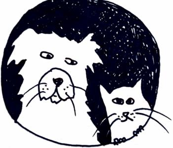 Alfred i Maurycy – wakacje pod psem