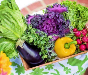 Verduras – warzywa – quiz z hiszpańskiego