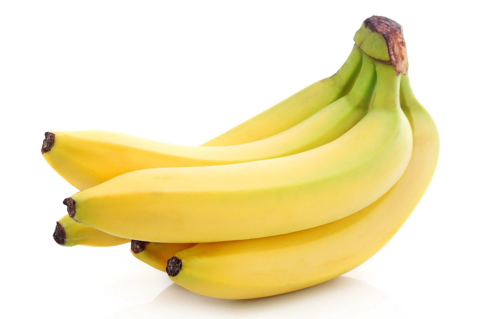 zagadki o owocach z odpowiedziami