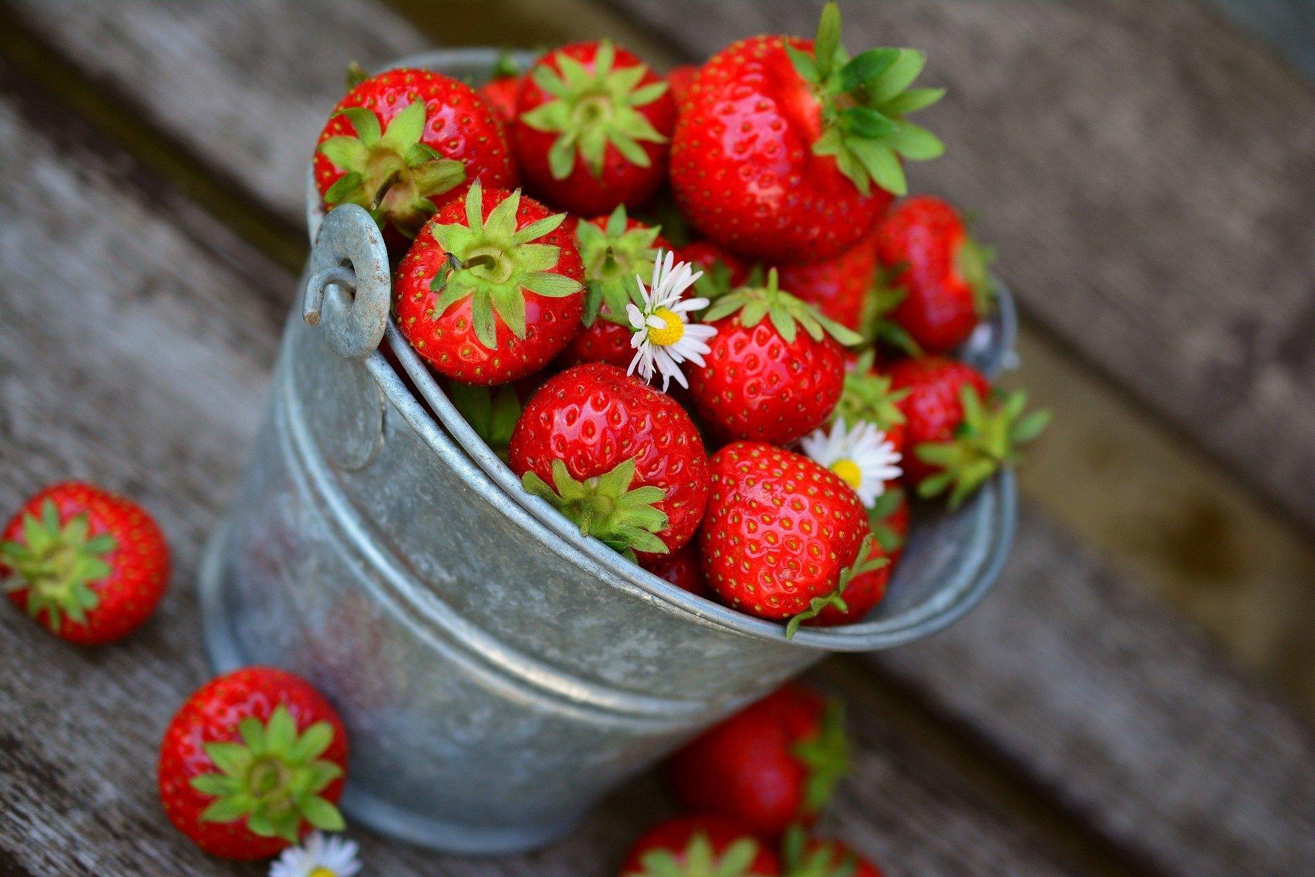Zagadki dla dzieci o owocach, zgadywanki z odpowiedziami