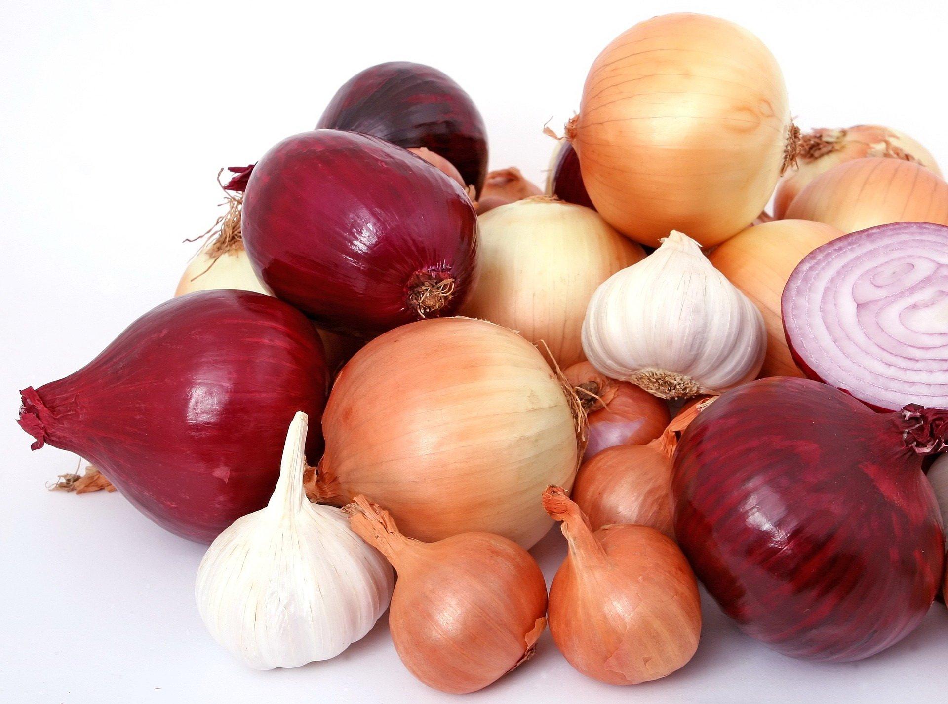 zagadki dla dzieci o warzywach