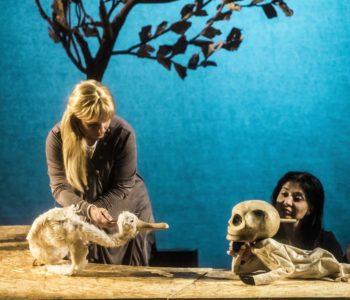Gęś, Śmierć i Tulipan - historia o przemijaniu ponownie na scenie Teatru Baj