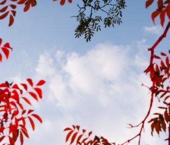 Łowcy chmur. Warsztaty o zjawiskach pogodowych