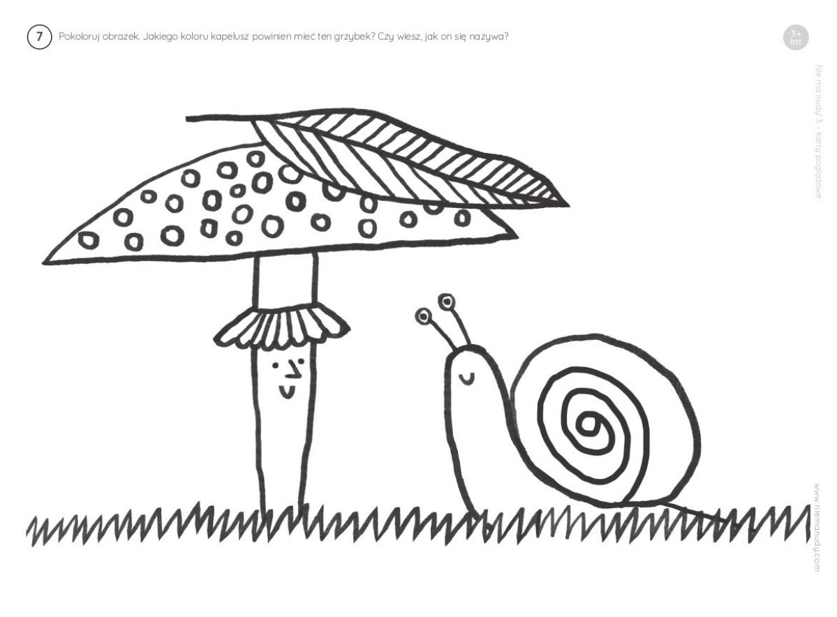 Kolorowanki do druku, grzybek i ślimak