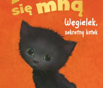 Zaopiekuj się mną. Węgielek, sekretny kotek - książka dla dzieci