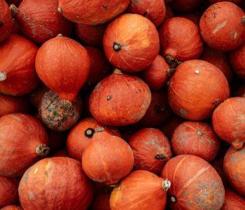 Warsztaty kulinarne: dynia i pomarańcze