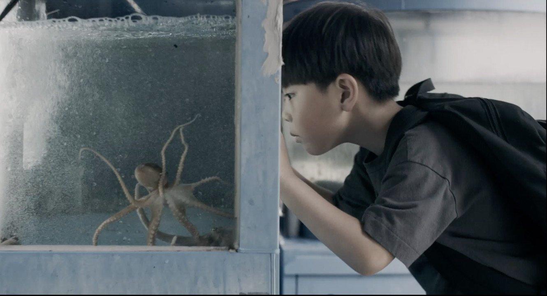 Przygody dzikich dzieci. Chłopiec i ośmiornica | Film i warsztaty | 7+