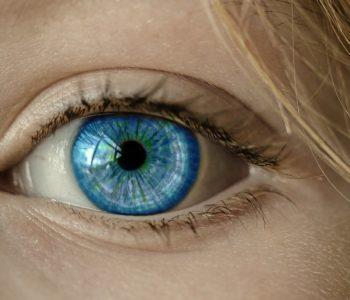 oko Ciało człowieka: quiz wiedzy