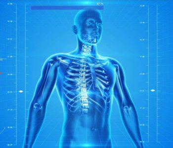 Ciało człowieka: trudny quiz wiedzy dla dzieci