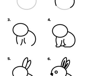 Jak narysować królika krok po kroku. Instrukcja rysowania króliczka