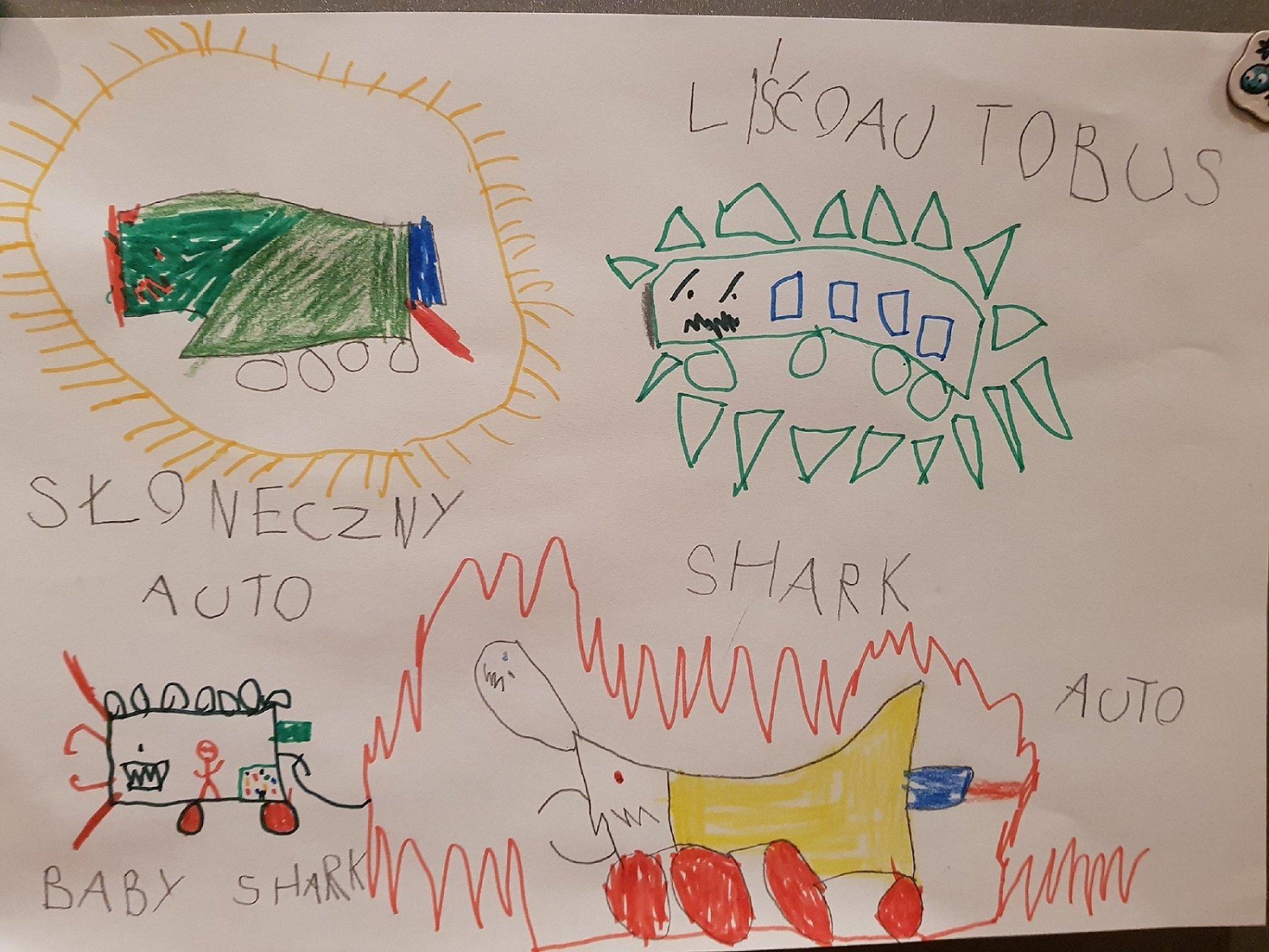 Shark auto i jego przyjaciele