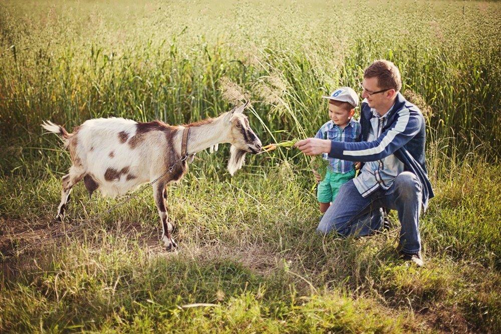 Z Tatą nawet koza nie jest straszna