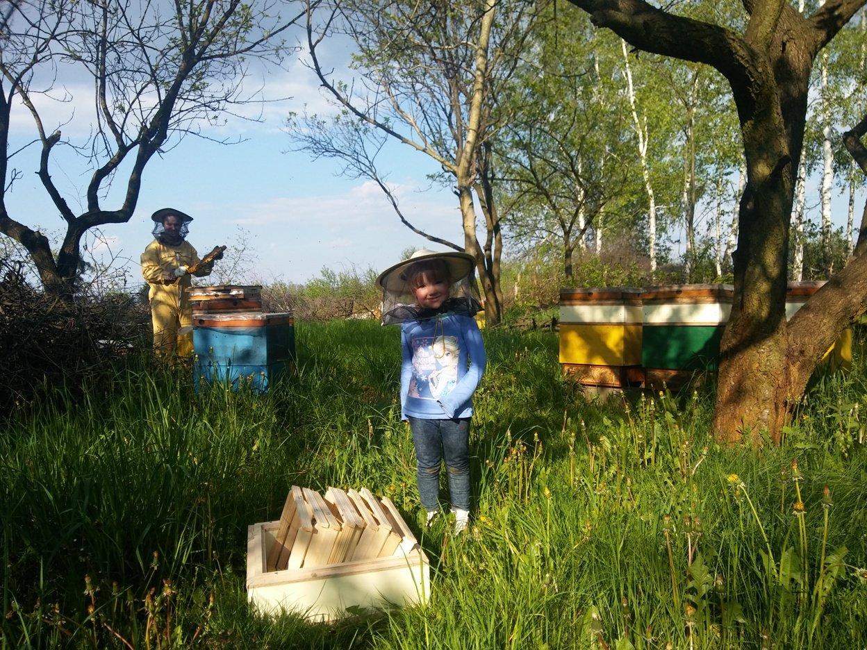 Pszczółki - wspólna pasja